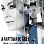 Grey's Anatomy 14ª Temporada