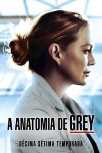 Grey's Anatomy 17ª Temporada